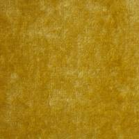 Boutique Velvets Fabric - Zest