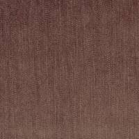 Momentum Velvets Fabric - Fig