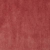 Momentum Velvets Fabric - Coral