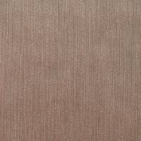 Momentum Velvets Fabric - Taupe