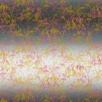 Meadow Grass Fabric - Mist/Fluoro