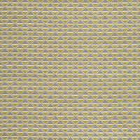 Petrova Fabric - Citrus / Graphite
