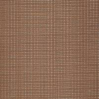 Momentum Accents Fabric - Amber