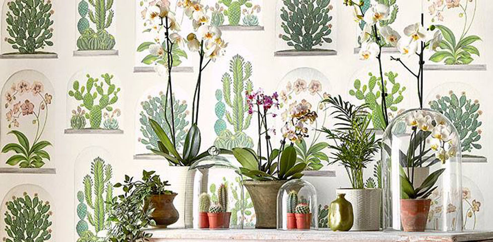 Sanderson Glasshouse Wallpapers