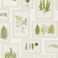 Fern Gallery Wallpaper - Ivory/Green