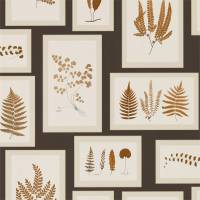 Fern Gallery Wallpaper - Charcoal/Spice