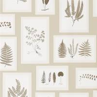 Fern Gallery Wallpaper - Linen/Sepia