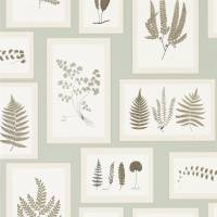 Fern Gallery Wallpaper - Blue/Sepia