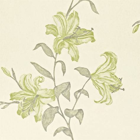 Sanderson A Painter's Garden Wallpapers Serena Wallpaper - Chartreuse - DAPGSE105