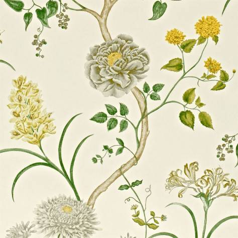 Sanderson A Painter's Garden Wallpapers Summer Tree Wallpaper - Silver/Linden - DAPGST104