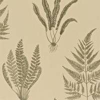 Woodland Ferns Wallpaper - Linen