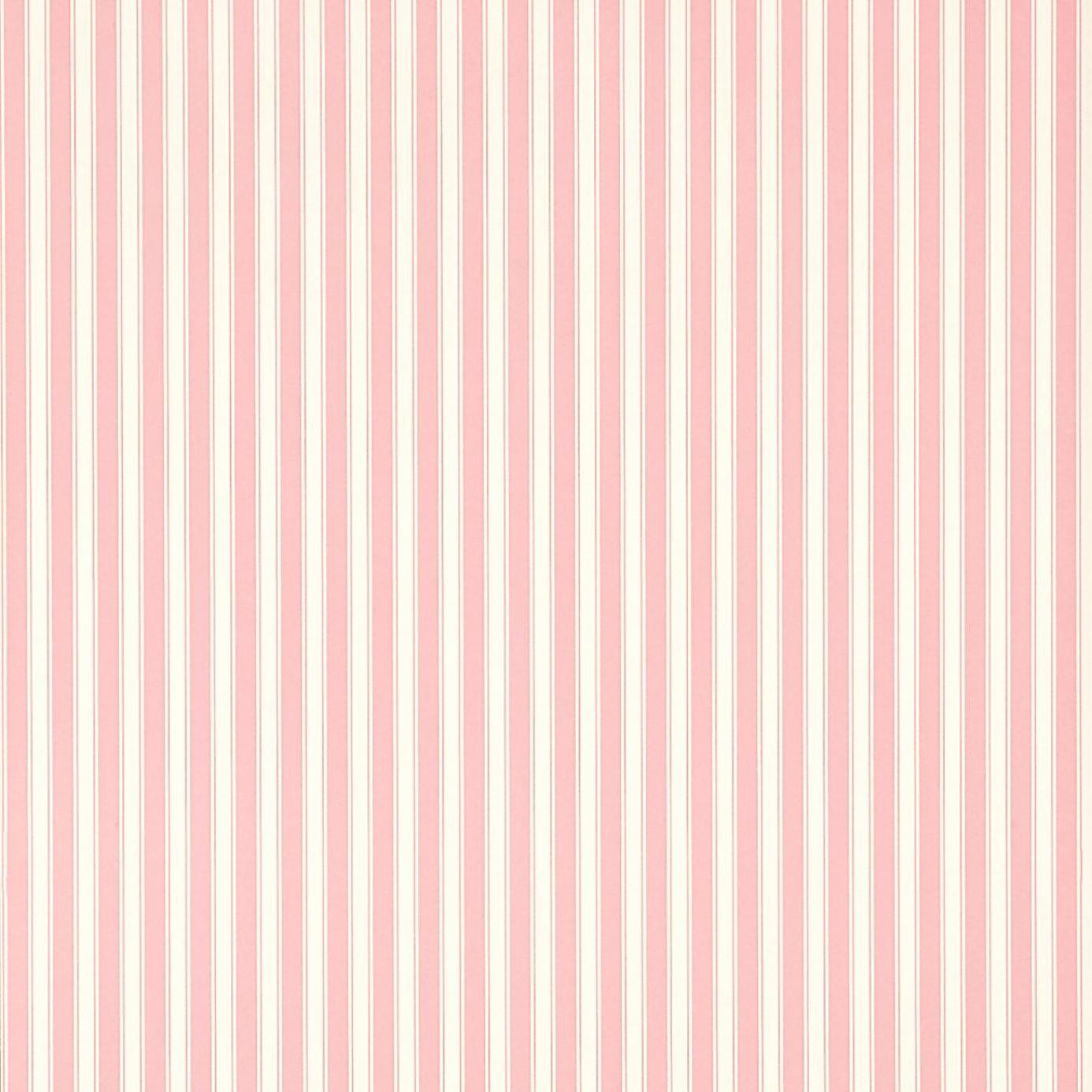 Sanderson Caverley Wallpapers New Tiger Stripe Wallpaper - Rose/Ivory ...