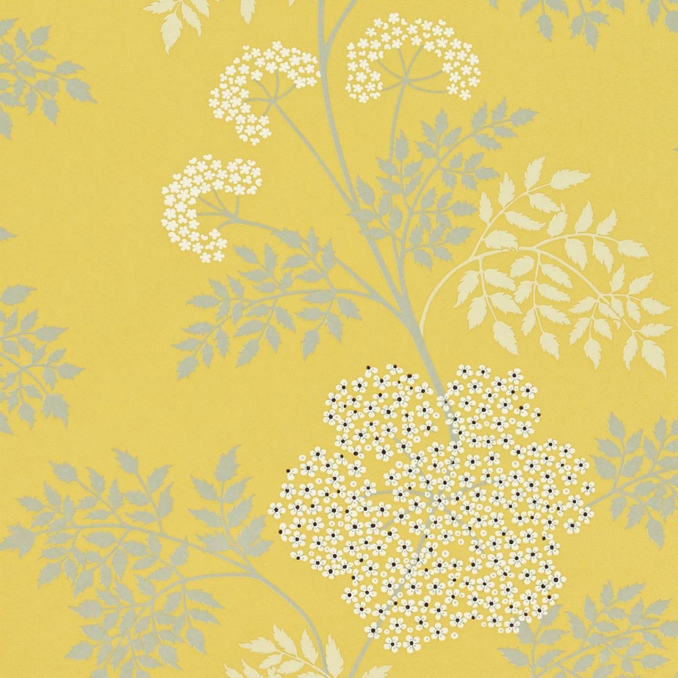 cowparsley wallpaper chinese yellow dopwco105