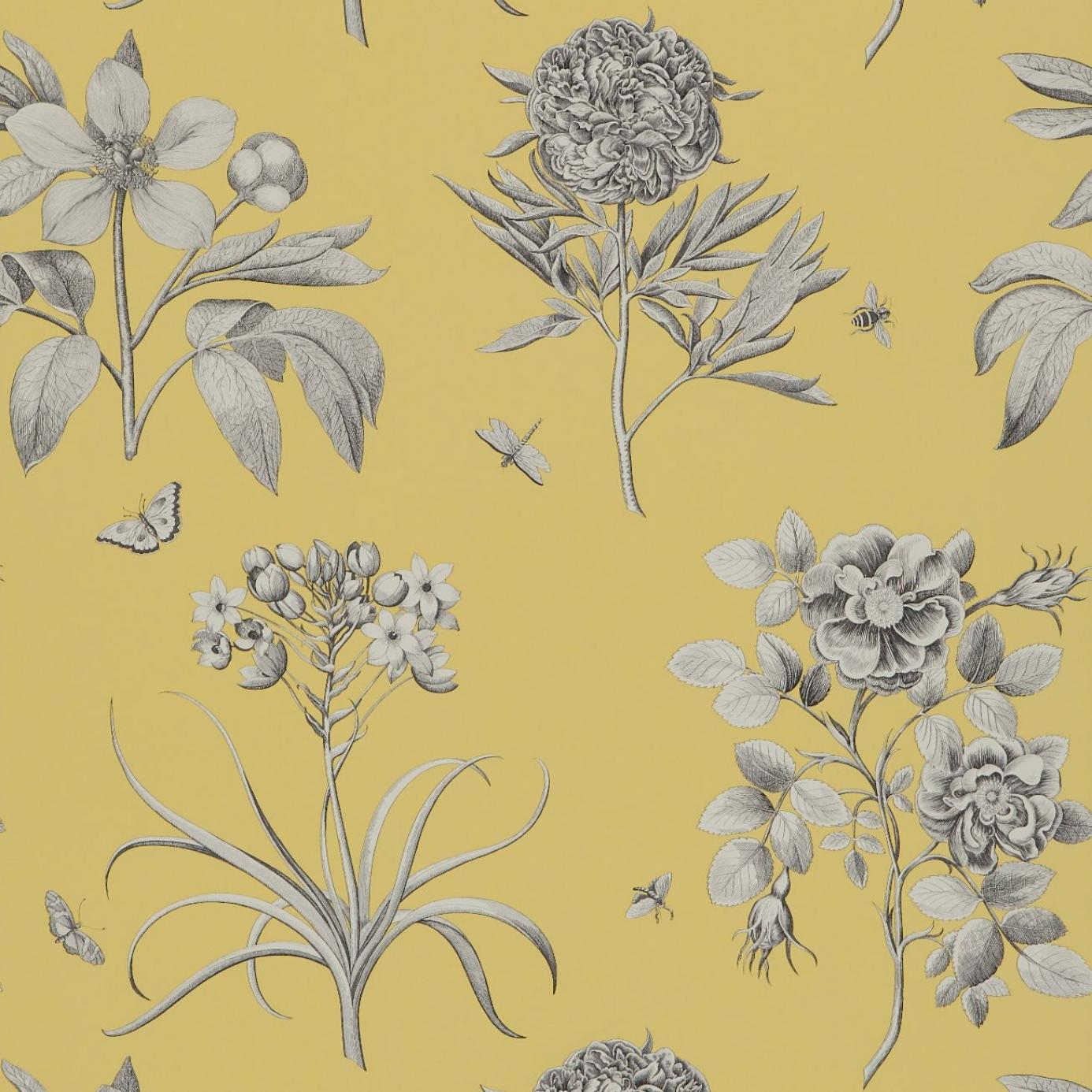 Etchings And Roses Wallpaper Empire Yellow Dpfwer104