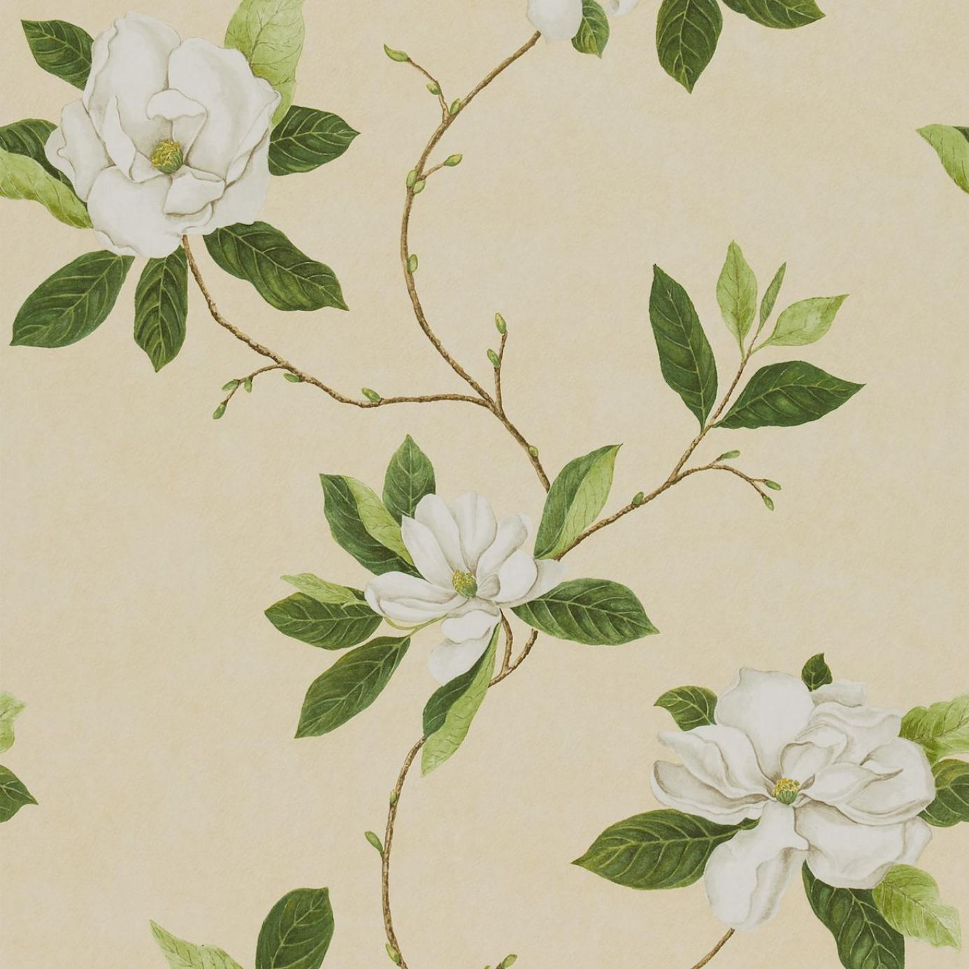 Sweet Bay Wallpaper Ivory Green Dpfwsw102 Sanderson