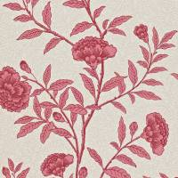 Chinese Peony Wallpaper - Red Orchid