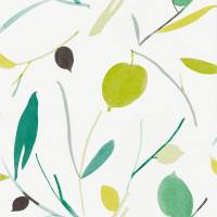Oxalis Wallpaper - Kiwi / Juniper