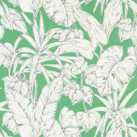 Parlour Palm Wallpaper - Gecko