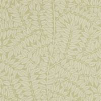 Branch Wallpaper - Catkin