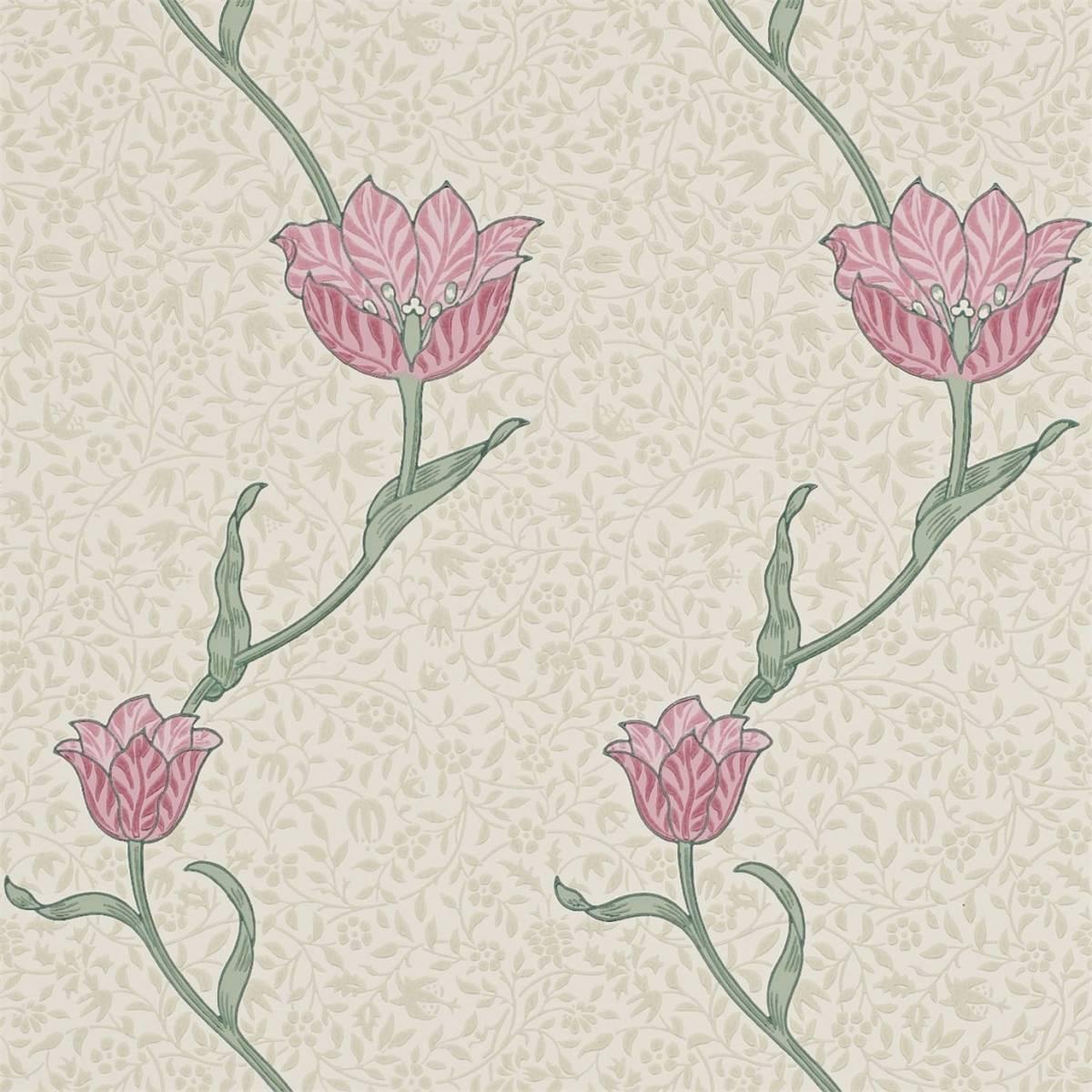 Garden Tulip Wallpaper Rose Thyme 210391 William