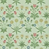 Daisy Wallpaper - Pale Green/Rose