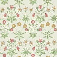 Daisy Wallpaper - Willow/Pink