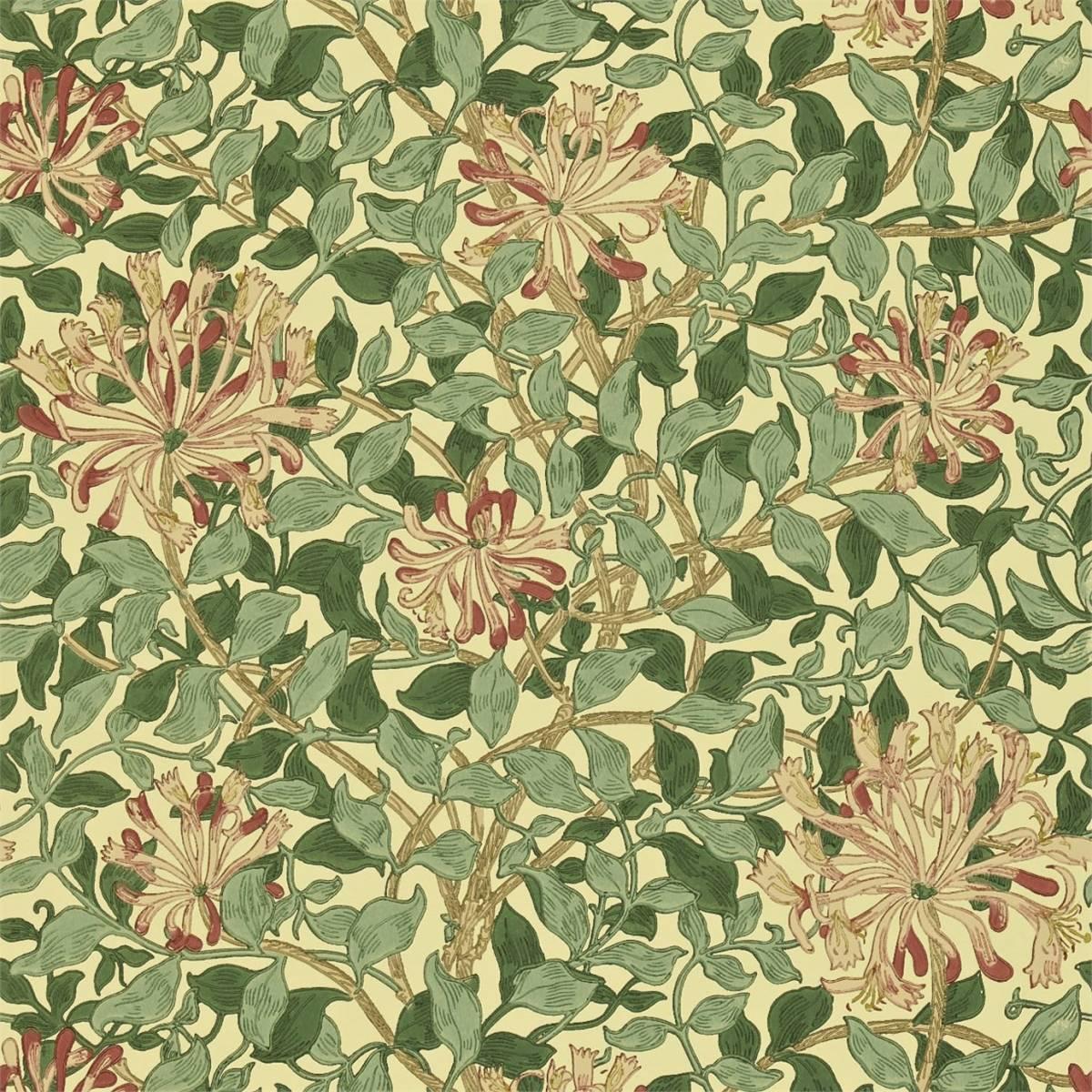Honeysuckle Wallpaper - Green/Coral Pink (210436 ...