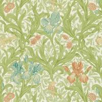 Iris Wallpaper - Fennel/Slate