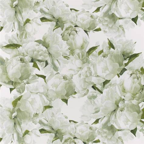 Designers Guild Foscari Fresco Wallpapers Peonia Wallpaper - Charteuse - PDG1094/03