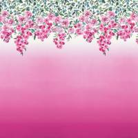 Trailing Rose Wallpaper - Peony