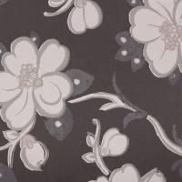 Lotus Flower Wallpaper - Noir