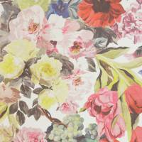 Orangerie Wallpaper - Rose