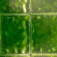 Aquarelle Wallpaper - Emerald