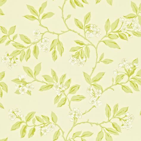 Sanderson Home Maycott Prints Fabrics & Wallpapers Blossom Bough Wallpaper - Cream/Sage - 211992