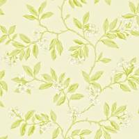 Blossom Bough Wallpaper - Cream/Sage