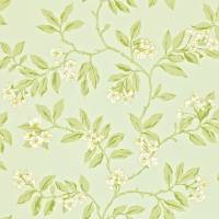 Blossom Bough Wallpaper - Duckegg/Sage