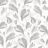 Fleur de Vigne Wallpaper - White/Black