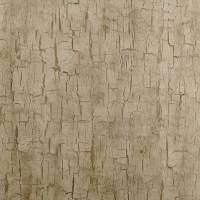 Tree Bark Wallpaper - Antique