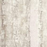 Tree Bark Wallpaper - Birch