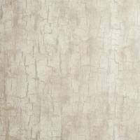 Tree Bark Wallpaper - Parchment
