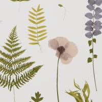 Herbarium Wallpaper - Blush