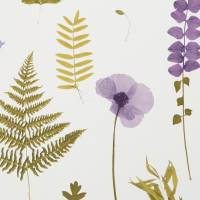 Herbarium Wallpaper - Heather