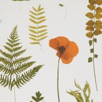Herbarium Wallpaper - Multi / Ivory