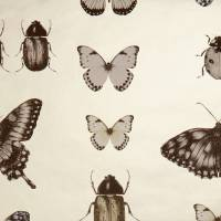 Papilio Wallpaper - Charcoal / Gold