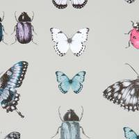 Papilio Wallpaper - Teal / Gilver