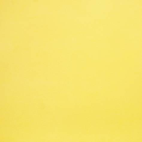 Caselio  Only Boys Wallpapers Plain Wallpaper - Yellow - 54102122