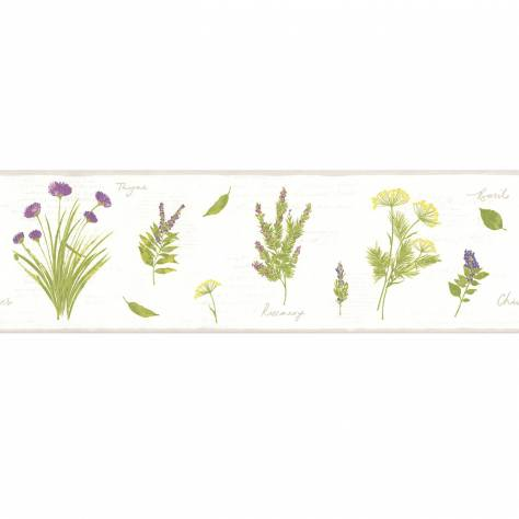 Caselio  Bon Appetit Wallpapers Herbier Wallpaper Border - Purple - 68435004