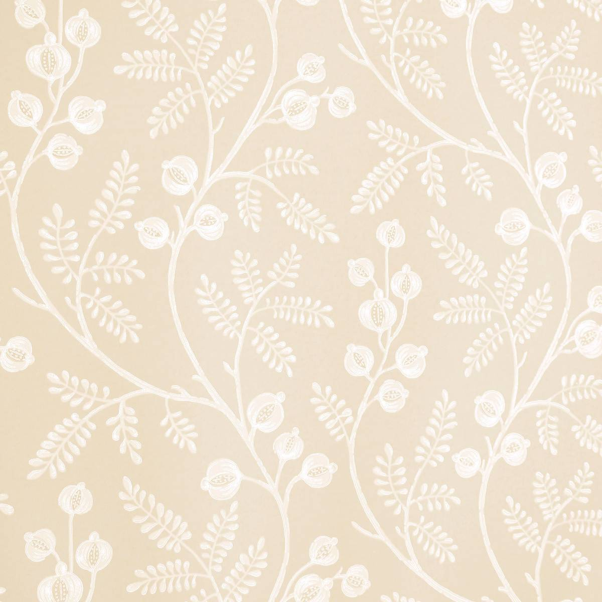 Morrigan Wallpaper Cream 07154 01 Colefax Amp Fowler