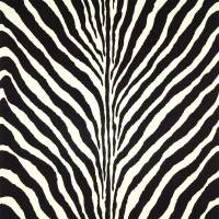 Bartlett Zebra Wallpaper - Charcoal