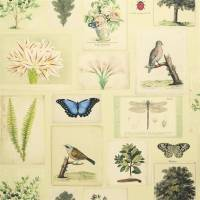 Flora and Fauna Wallpaper - Parchment